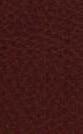 tume-pruun