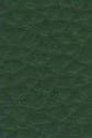 tume-roheline